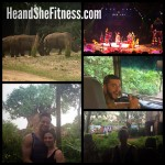 Day 2 of the #disneyworldadventure : #heandshefitness taken #disneysanimalkingdom – call of the wild! #fitnesscouples #fitnessjourney #fitnessvacation