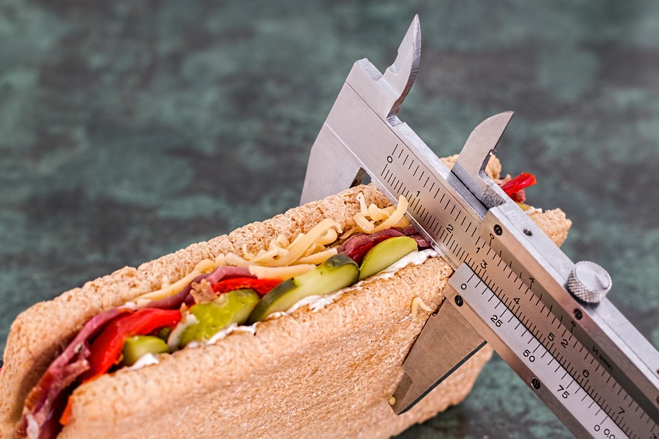 Weight Loss measuring sandwich