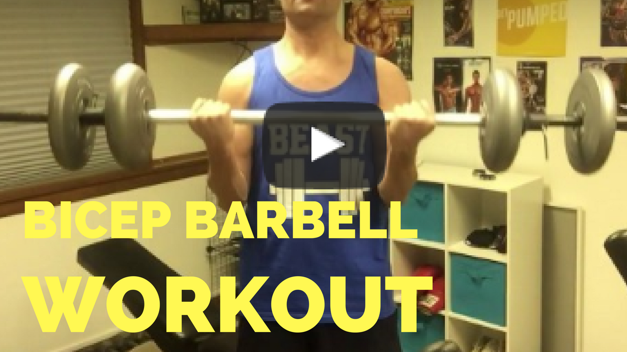 bicep barbell workout video