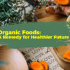 Organic Foods remedy for a healthier future