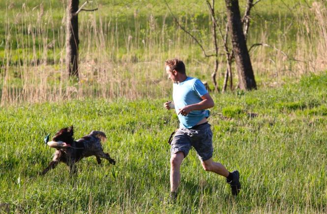 Dog for Exercise Buddy running