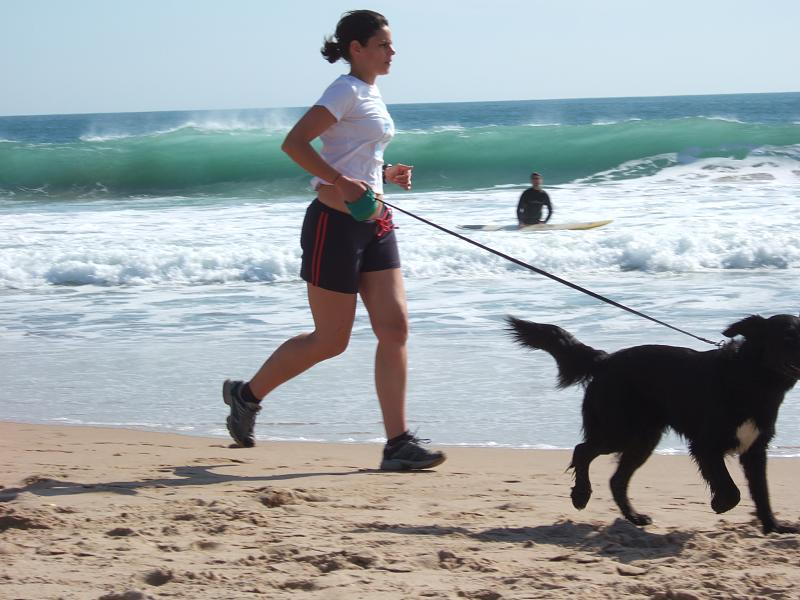 Exercise Buddy walking dog on beach