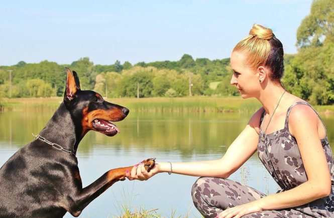 3 Key Benefits of Exercising with a Dog