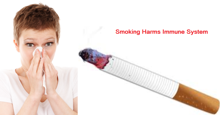 How Does Smoking Affect Immune System? How to prevent it?