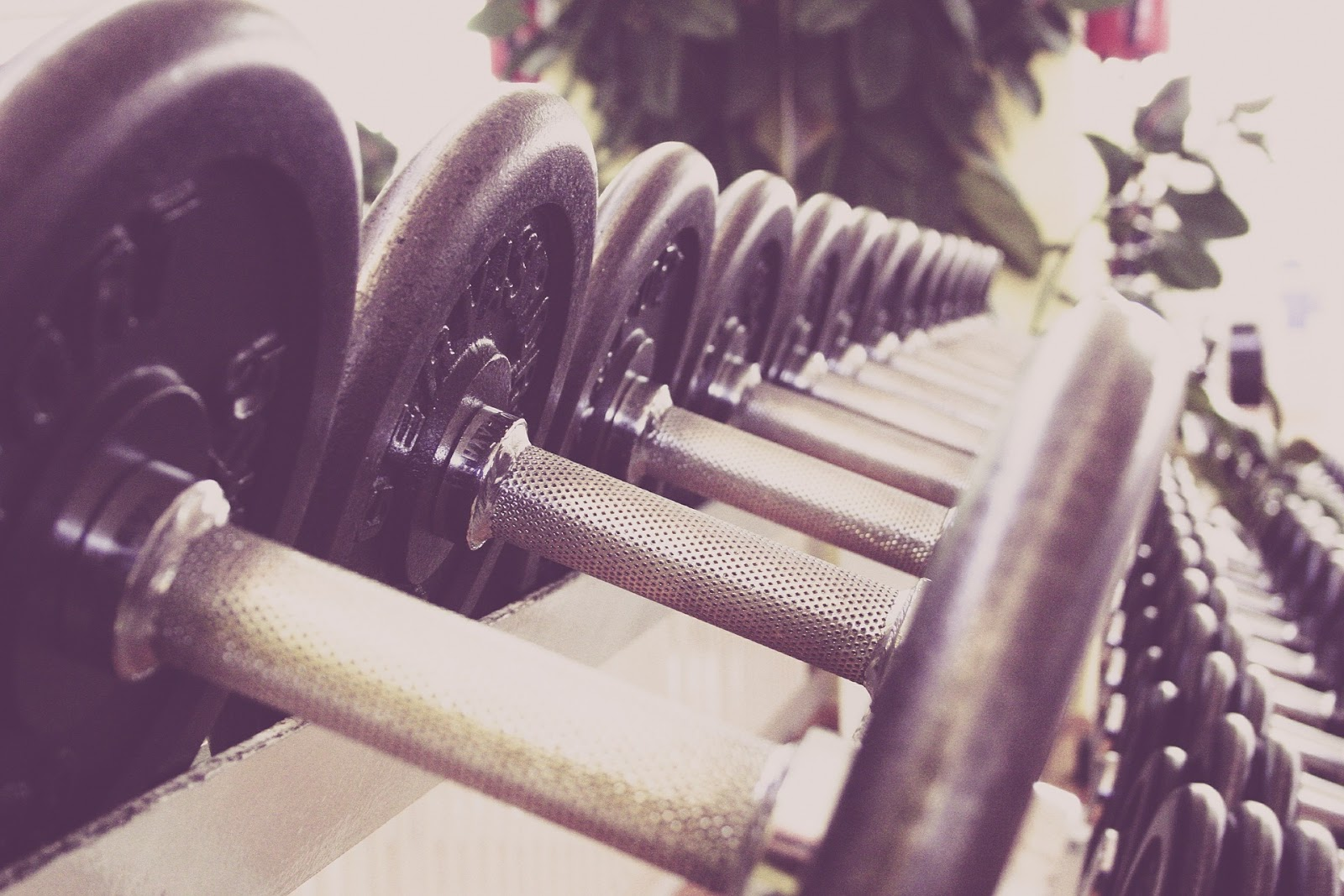 The Fitness Industry: A Results-based Game dumbbells