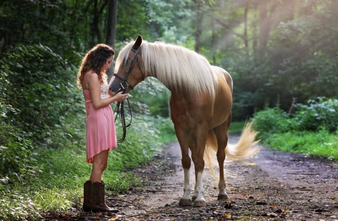 Improve health of your horse by giving him flaxseed