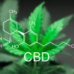 Working Out with CBD: CBD Muscle Recovery