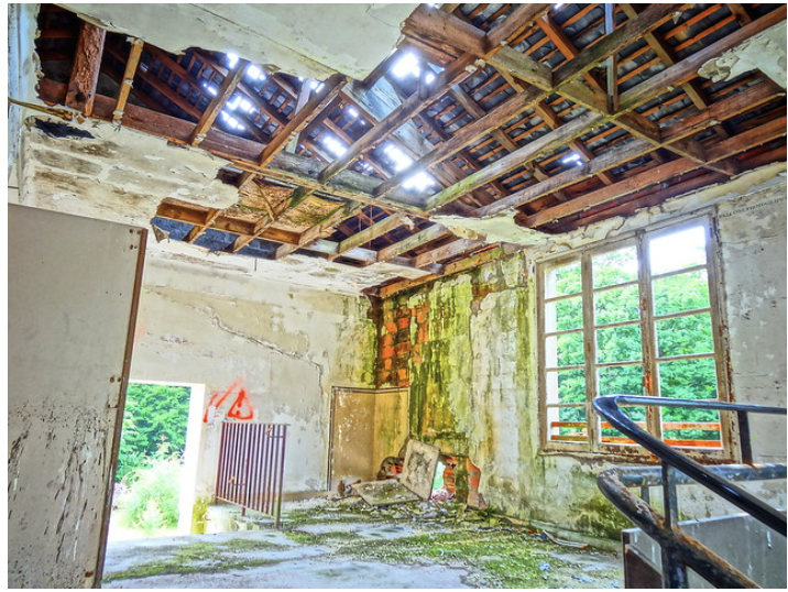 5 Tips for Preventing Mold Growth in Your Home