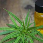 CBD Oils: An Incredible Initiative