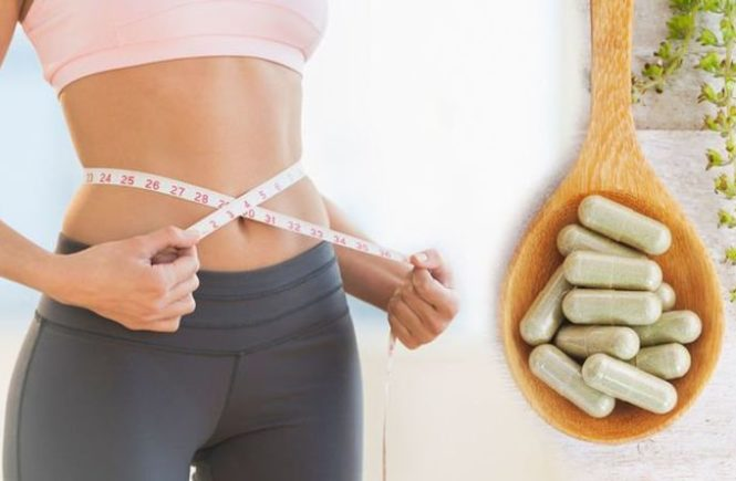 Best Probiotic Supplements Can Help You Lose Weight & Belly Fat
